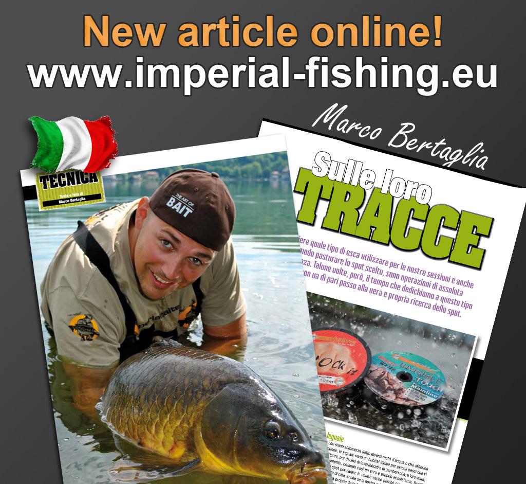 article_marco_bertaglia