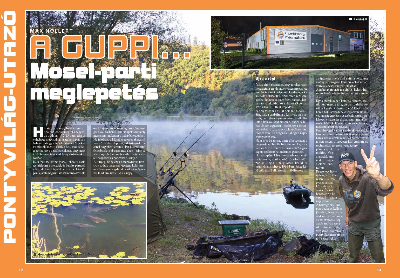 guppy-max_nollert-pontyvilag