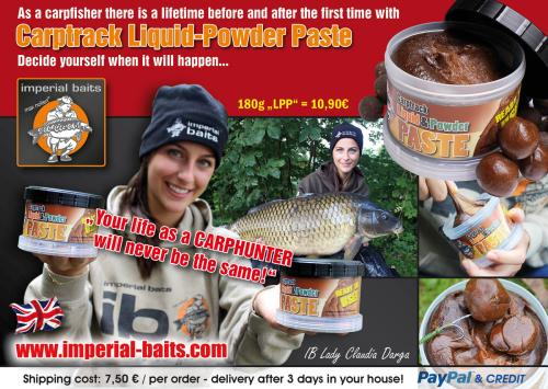 carpworld-november-1200