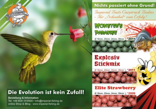 evolution advertisment1500