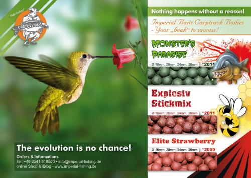 evolution advertisment1500en