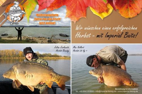 herbst2012 advertisment1500